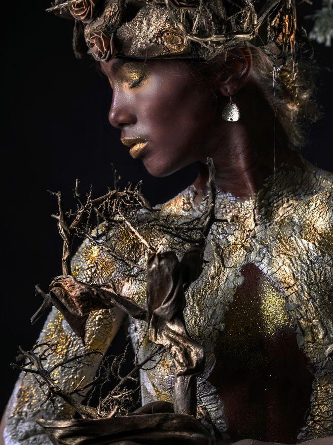 L'Arbre feminin - Serge Ferreux