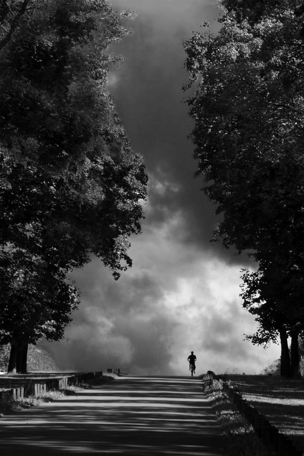Sortie risquée - Yves Cognet